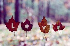 Atumn Love