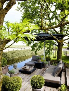 Neutral outdoor patio with adjustable patio umbrella, neutral daybed and trimmed boxwood topiaries.