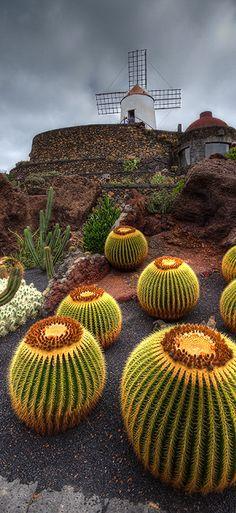 Jardín de Cactus, Lanzarote, España.