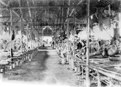 Prisoners of war, in their quarters in an open-sided attap hut in the POW camp (commonly called Kanburi by the Australians). All seem aware that their photograph is being taken secretly, at risk to themselves and the photographer if film or camera were discovered by the Japanese. Many prisoners were brought here from Burma after the Burma-Thailand railway was completed.