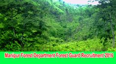 Manipur Forest Department Recruitment 2016 Deputy Ranger, Forester, Forest Guard…   Forest Department, Government of Manipur invites application in the prescribed format for direct recruitment of Forest Guards in Forest Department, Government of Manipur under Forest Guard's Recruitment Rules 2000. The last date for receipt of applications is 9th September 2016.