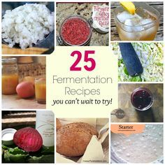 25 Fermentation Recipes, from relish to pickles to sauerkraut and more! Probiotic Foods, Fermented Foods, Kombucha, Methods Of Food Preservation, Raw Food Recipes, Healthy Recipes, Healthy Life, Healthy Eating, Fermentation Recipes