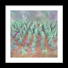 Wall Art Prints, Framed Prints, Art Sites, Gifts For Family, Fine Art America, Floral Design, Gallery, Artist, Artwork