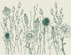 Blumenwiese Illustration von loretta cosima Diagram, Tapestry, Illustrations, Home Decor, Art, Paper Mill, Nice Asses, Hanging Tapestry, Art Background