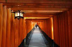 Inari. Japan. 2015 Curtains, Japan, Home Decor, Blinds, Decoration Home, Room Decor, Draping, Home Interior Design, Japanese