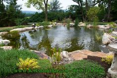 Landscaping rocks can be used as an elegant decoration to your fountains, gardens and water features * Click image for more details. Pond Landscaping, Landscaping With Rocks, Large Backyard, Ponds Backyard, Pond Design, Landscape Design, Pond Waterfall, Waterfall Design, Pond Water Features