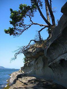 Nanaimo beach Dream Vacation Spots, Dream Trips, Dream Vacations, North Vancouver, Vancouver Island, Sutton Park, West Coast Road Trip, Bungee Jumping, Island Life