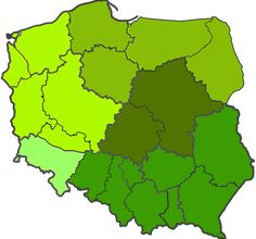 Rolety okienne producent. ABM Jędraszek oferuje szeroką gamę kolorów i wzorów, wysoką jakość i atrakcyjne ceny! Grinch