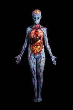 Anatomy - Since 2011, Johannes Stötter has been holding anatomy-related body painting workshops at Yoni-academy in Innsbruck, Austria. Here is a breath-taking example of one of the artist's anatomy body art paintings. A lot of detail and research has gone into this project, and the overall effect is mesmerizing!