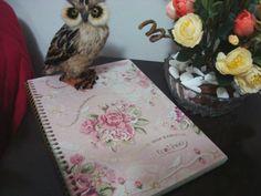 Começando diário novo. Mais: http://www.blogcoisaetal.com/2014/05/diario-por-mais-semanas-assim.html
