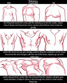 Little Art Reference things — raspbeary: requested! its just some stuff ive. Anatomy Drawing, Guy Drawing, Drawing Tips, Figure Drawing, Drawing Models, Human Anatomy, Body Reference, Anatomy Reference, Drawing Reference