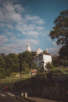 Le Clos Montmartre: A Secret Vineyard in the heart of Paris