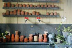 Maravilhosos  Cantos Para Plantar!por Depósito Santa Mariah