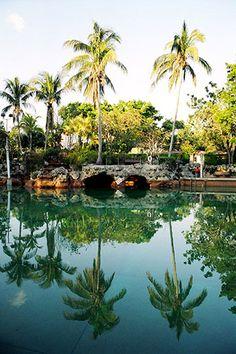 Coral Gables Venetian Pool #miami