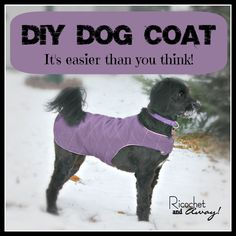 Ricochet and Away!: DIY Dog Coat For my Casey and Lulu!