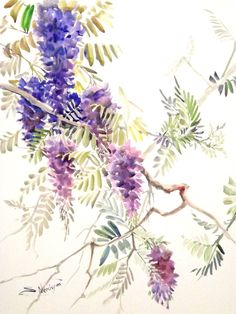 Wisteria Original watercolor painting 24 X 18 in by ORIGINALONLY, $89.00