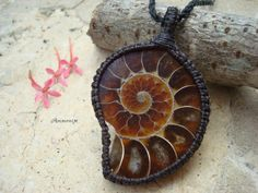 Ammonite Necklace/Protection/Ammonite by GaiasGiftsToUs on Etsy
