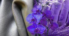 Tendances - L'été 2015 en perspective colorée - ©CUIR A PARIS Perspective, Spring Summer 2015, Plants, Inspiration, Leather Dye, Trends, Biblical Inspiration, Perspective Photography, Flora
