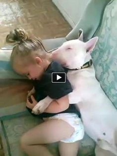 Sleepy Bull Terrier and Baby Girl :)