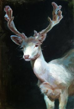 White Stag II - Oil Painting - Limited Edition Print - This is a limited edition fine art giclee print of one of my original oil paintings. Dibujos Cute, Arte Horror, Caravaggio, Albino, Limited Edition Prints, Art And Illustration, Oeuvre D'art, Art Inspo, Art Reference
