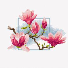 Gallery.ru / Фото #13 - Цветы Jacky Lonen - BlueBelle