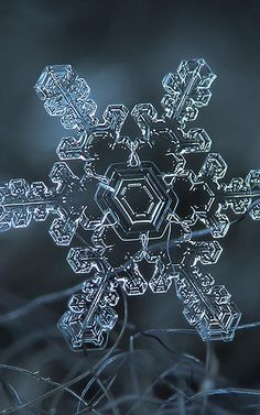 These Amazing Shots Of Snowflakes Were Taken With An Ordinary Cam - found via Co.Design