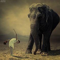 Les photomontages de Caras Ionut Photo