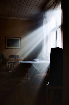 Window Light Streams