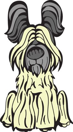 Briard    http://www.thedogtable.com/the-dog-table/herding/briard/