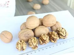 Extra Light Kernels walnut kernels for sale & wholesale, Extra Light Kernels walnut kernels manufacturers | Suguo International Walnut Kernels, Raw Color, Walnut Oil, Harvest Time, Essential Fatty Acids, Vitamin E, Stuffed Mushrooms