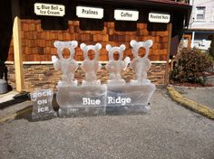 Fire and Ice Chili tasting with ice sculptures in Blue Ridge GA