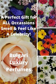 Bulgari Luxury Perfumes are perfect gifts. Spoil yourself because you deserve it! Spoil Yourself, You Deserve It, Perfume, Luxury, Gifts, Presents, Favors, Fragrance, Gift