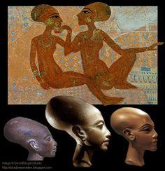 Elongated skull egypt 01