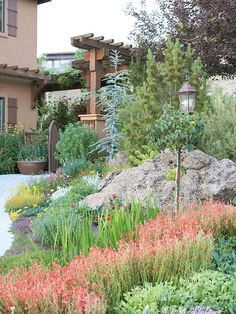 Flowers and foliage are wonderful additions to landscapes that incorporate boulders, big and small. Discover how to add plants for rock gardens to maximize beauty, color, and visual interest.