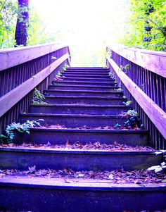 The Purple Steps