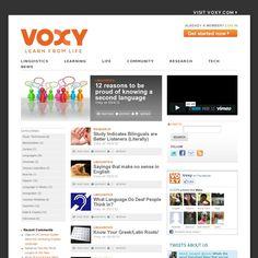 The website 'http://voxy.com/blog/' courtesy of Pinstamatic (http://pinstamatic.com)