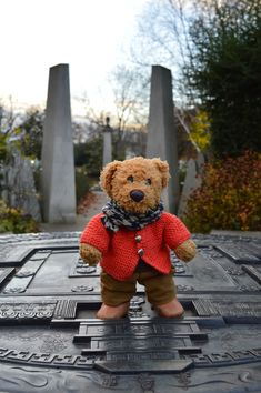 What am I doing here in this November afternoon? | Misiu our teddy bear