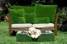 My Basset Hound would fit right in there. And he would love it.  He really would.