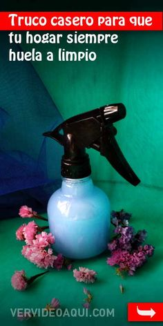 Truco casero para que tu hogar siempre huela a limpio