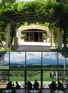 Domaine Chandon winery, Napa Valley.  The tasting room has a wonderfully bubbly, jazzy feel to it - super fun atmosphere.