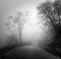 road,path,mono,monochrome,black and white,fog,misty,rainy,,fall, autumn,abstracts, flowers, floral, plants, colorful, horizontal, outdoors, nature, landscape, exterior, europe, photography, fine art, national park, sierra nevada, horizontal, colorful, outdoors, nature, landscape, exterior, europe, photography, spain, granada,