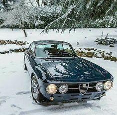 Alfa Romeo winter