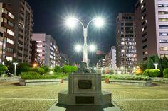 写真 名犬チロリの記念碑 銀座の外れの公園の夜景