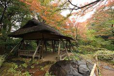 六義園 Rikugien Garden Tsutusuji-no-chaya teahouse, Tokyo.
