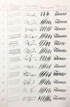 Академический рисунок Calligraphy Lessons, Calligraphy Worksheet, Calligraphy Tools, Calligraphy Drawing, Copperplate Calligraphy, Calligraphy Practice, Calligraphy Handwriting, Calligraphy Alphabet, Penmanship