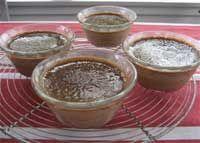 Stevia Recipes - Cooking With Stevia: No Added Sugar Cinnamon Custard Recipe Using Stevia