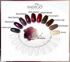 Color Gel Brush #torino #indigonailspiemonte #indigonails #gelbrush #loveindigonails