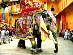 The Elephant Festival is an annual event held every year at Jaipur the capital city of Rajasthan. The Elephant Festival