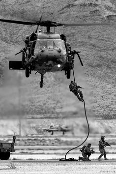 Raine Black Hawk