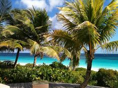 Harbour Island, Bahama's - http://www.holidaycheck.nl/city-reisinformatie_Harbour+Island-oid_722.html